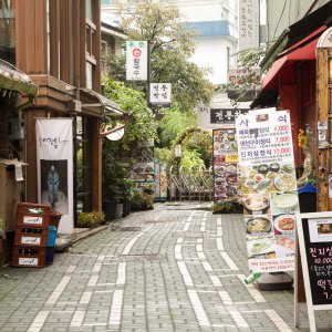 a pretty alley in insa-dong, Seoul, Korea featuring stalls and beautiful plants